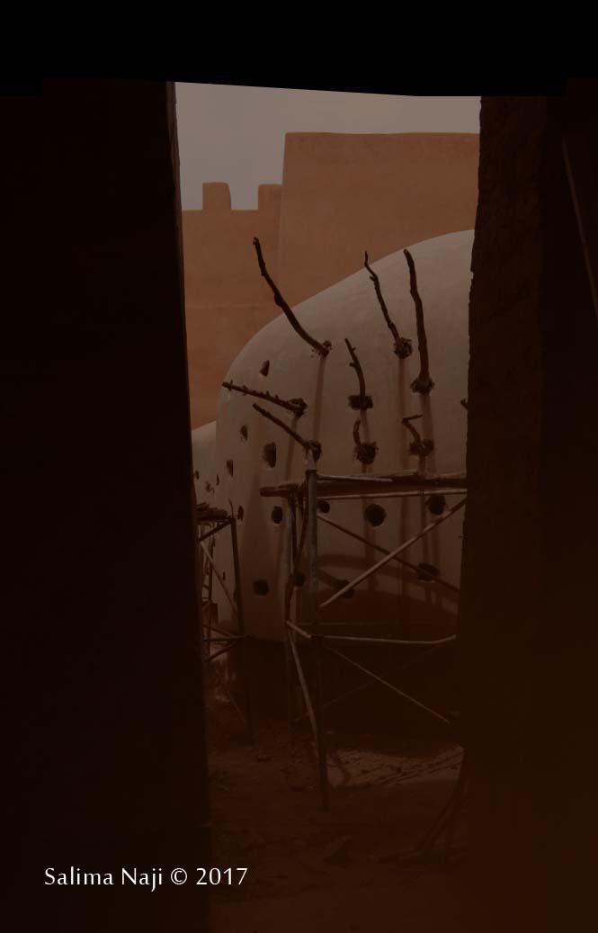 Terre earth salima naji architecte morocco